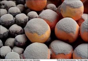 Une photographie célèbre de la poussière... de quoi ?