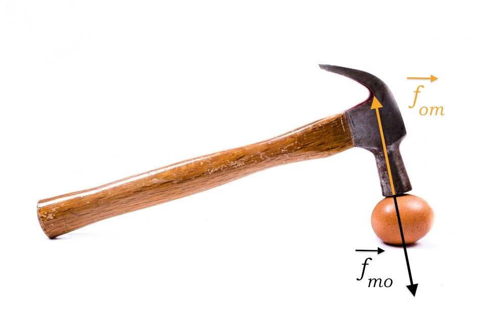 marteau, œuf, forces